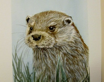 Original watercolour painting of an Otter by Josephine Bell