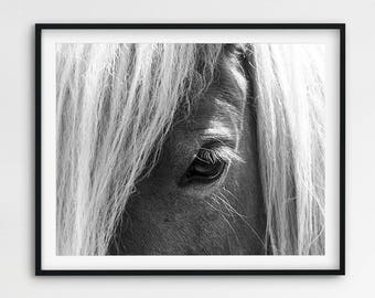 Horse Print, Horse Eye Photo, Black And White Photography, Horse Wall Art, Icelandic Horse, Horse Decor, Modern, Minimalist, Printable Art