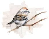Watercolor Sparrow Print ...