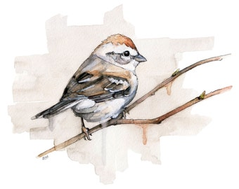 "Watercolor Sparrow Print - Painting titled, ""Sparrow"", Songbird, Bird Prints, Watercolor Bird, Bird, Watercolor Painting, Sparrow Art"