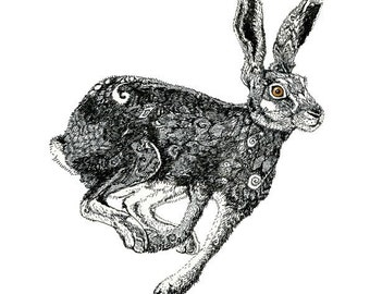 Giclee Hare Print pen and ink Hare illustration 11.7x16.5