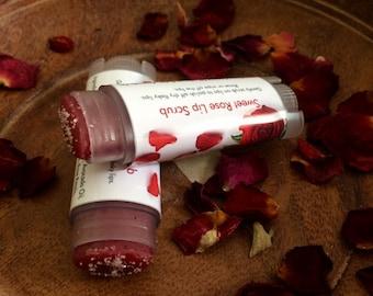 Lip Scrub – Sugar Scrub – Natural Lip Scrub – Lip Polisher – Rose Lip Scrub – Sugar Lip Scrub – Lip Scrub Tube – Lip Scrub Stick - Rose Lips