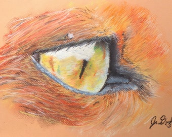 Fox Eye - Original Pastel Artwork