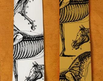 Horse Neck Tie - Men's Horse Gift - Skeleton Necktie - Horse Anatomy - Bones - Weird Stuff - Vintage Drawings