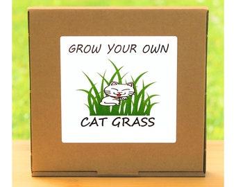 Unusual Windowsill Gardening Gift - Grow Your Own Cat Grass Plant Kit