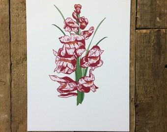 Single Stem Snapdragon Botanical Floral Flower A4 Print