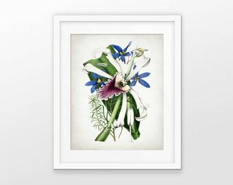 Purple, Yellow And Blue Flower Print - Botanical Print - Colorful Flower Decor - Flower Art - Single Print #1672 - INSTANT DOWNLOAD