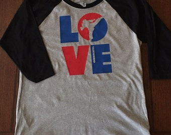love taekwondo youth raglan