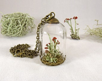 Lichen necklace, terrarium necklace, moss pendant, nature jewelry, real flower pendant