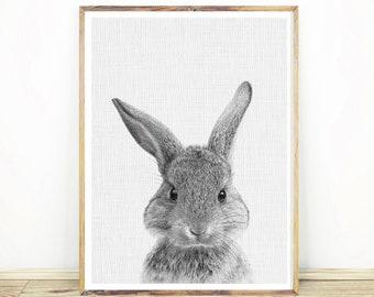 Nursery Decor, Nursery Wall Art, Bunny Print, Animal Nursery Prints, Nursery Animals Prints, Bunny Print, Animal Prints, Rabbit Art #043