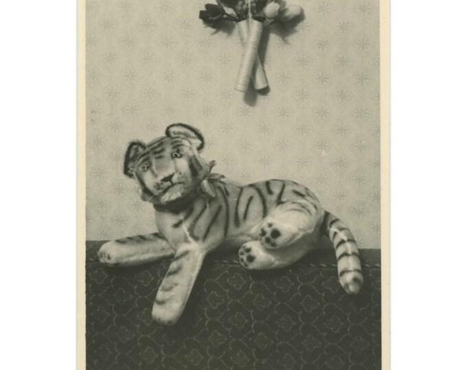 Vintage Snapshot Photo: Tiger [85674]