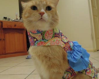 Pet clothing for cats and small dogs: Purple and blue cotton dress (Blue on rainbow)