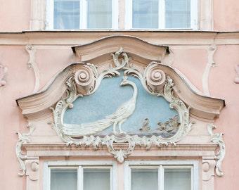 Reis fotografie - Peacock venster, Praag, Tsjechische Republiek, grote Wall Art, romantisch roze Home Decor