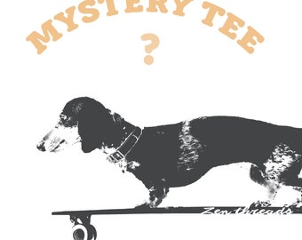 Women's MYSTERY TEE! (ships free with another item) custom custom