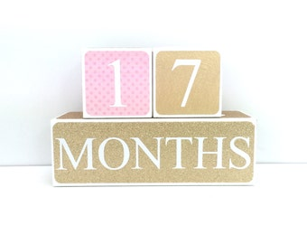 Wooden Baby Age Blocks - PINK AND GOLD Months, Years, Weeks, Grade - Nursury- Photo Prop- Shower Gift