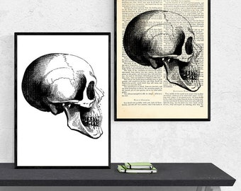 A3 Print, Anatomy Art Prints, Anatomy Dictionary Art, Anatomy Art Gifts, Dictionary Art Print, Anatomy Poster, Anatomy Print, Medical Prints