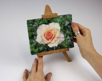 """Easel Art   """"Wet With Rain""""   Pink Rose After the Rain   Canvas Print   Display Stand   Tabletop   Artistic Gift   Woods Scenery   Handmade"""