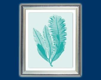 Sea fan art, Seafan teal, Seaweed poster, Bathroom decor, Nautical art, Beach house decor, Nursery art, Bathroom decor, Instant download