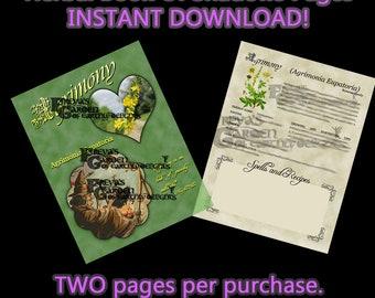 Agrimony Herbal Book Of Shadows, Herbal Witchcraft Information, Herbal Correspondences, Herbal Spells, Digital Download Herbal BOS pages