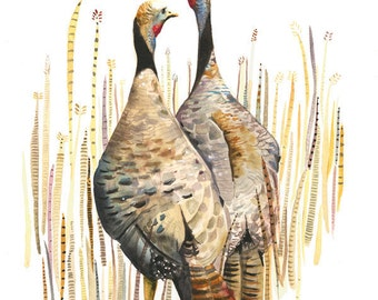 Wild Turkey, Nature Art, Bird Art, Watercolor Print- Wild Turkeys in the Straw