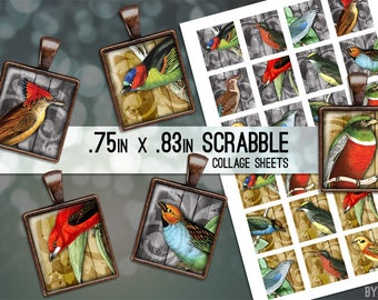 Vintage Birds Collage Sheet Digital Scrabble Tile Images .75x.83 on 4x6 and 8.5x11 Download Sheets for Glass or Resin Pendants E0012