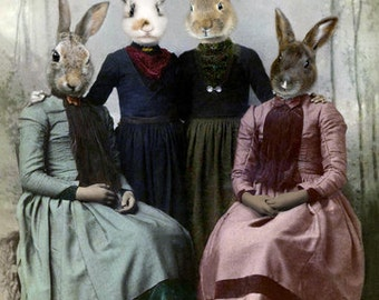 Charlie's Angels, Rabbit Print, Anthropomorphic, Whimsical Art, Bunny Photo, Photo Collage Art, Digital Art, Rabbit Art, Funny Gift