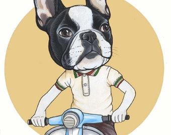 Original French Bulldog Drawing / A4 size / framed