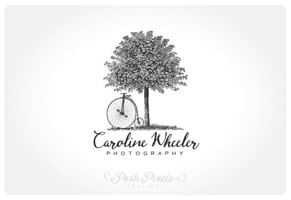 Logo Design Premade Tree Bicycle Photography