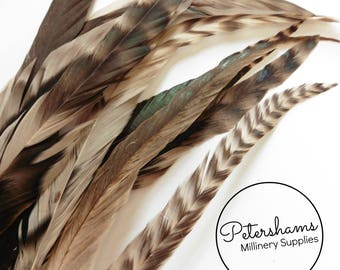 Full Coque Chinchilla Feathers for Millinery and Hat Trimming - Rose