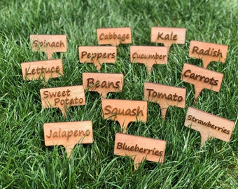 Fruit/veggie garden stakes