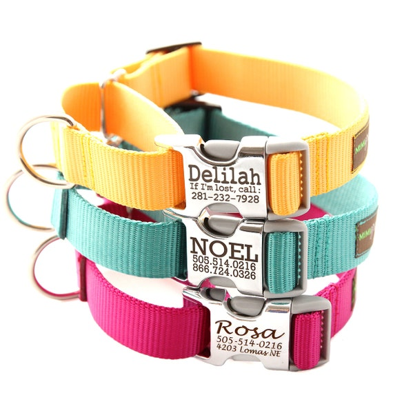 buckle martingale dog collar personalized with 27 nylon