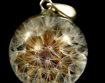 Real Dandelion Pendant, Natural Dandelion Necklace, Christmas Gift, Dandelion Resin Jewelry, Christmas Gift. Sphere 2.5 cm. Witchout chain.