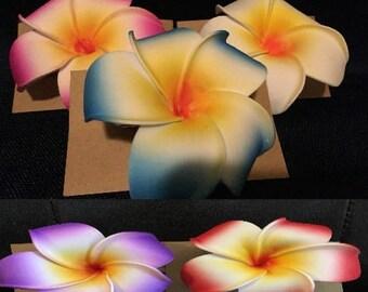 Hawaiian Plumeria Hair Clip