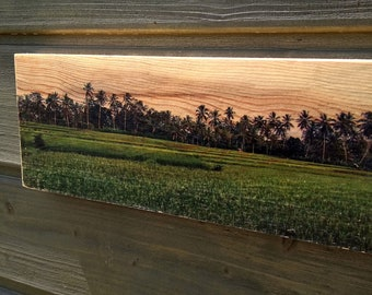 Wooden Print - Bali Field | Wood | Print | Wall Art | Decor | Natural Prints | Surf Art