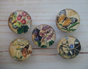 Butterfly Fridge Magnets, Glass Kitchen Magnets, Set of 5, Kitchen Decor, Hostess Gift, Housewarming Gift, Office Decor, Locker Magnet