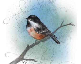 Chickadee PRINT - 8.5 x 11