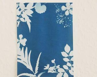 Cyanotype Flowers Original A5
