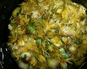 Dandelion Flower Infused Herbal Oil