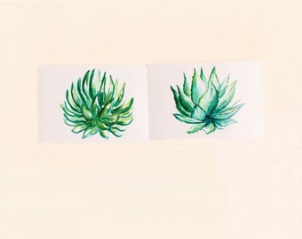 Succulents Print Set, Set of 2, Horizontal