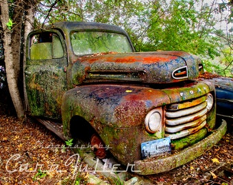1948 Ford F1 covered in lichen in woods Photograph