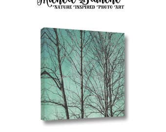 Nature Photo Canvas, Gallery Wrap Canvas Bare Trees in Teal Sky, Nature Photo Canvas, Abstract Wood Tree Art, Tree Branches Canvas Art