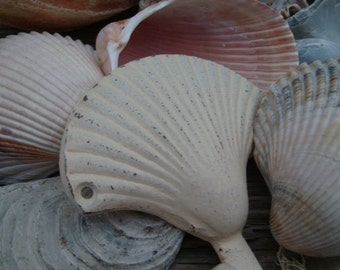 sea shell hooks in cream or 25 other colors