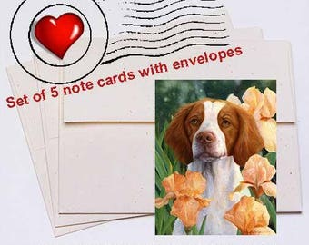Compliments, Brittany Note Card Set