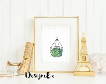 Print - Hanging Cactus