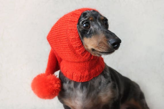 Knitting Pattern Dog Hat Dachshund Hat Pet Clothes Pet