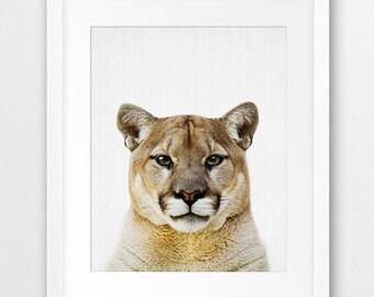 Cougar Print, Nursery Wall Art, Mountain Lion Print, Forest Animals Decor, American Animals, Puma Photo, Nursery Decor, Kids Room Printable