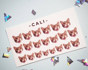 Personalised Nail Decals - Pets