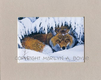 8 x 10 inch MATTED PRINT - FOX; wall art, wildlife, nature, printed on 110 card stock, light beige mat, winter, from original art