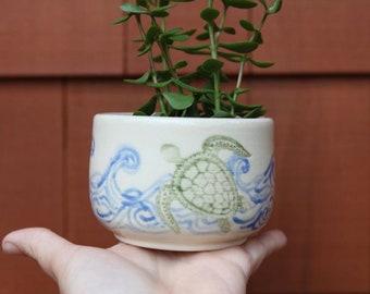 Sea Turtle Succulent Planter in Stoneware