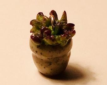 Miniature Succulent Plant Charm: Necklace or Bracelet